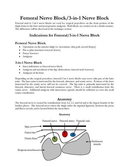 femoral nerve block/3 - in - 1 nerve block - handout | medbox, Muscles